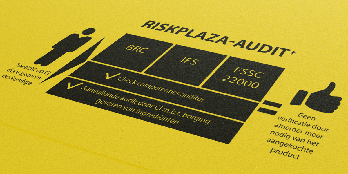 Riskplaza-audit-plus